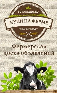 Доска объявлений фермеров авито сургут бесплатные объявления подать бесплатное объявление