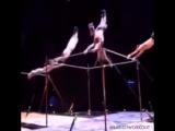 Синхронизированные гимнасты