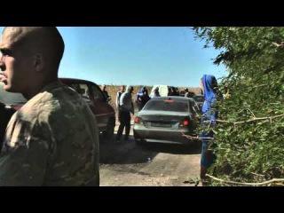 Мукачево-2: одесская «Нимфа» участвовала в «разборках» за урожай нардепа от БПП на стороне Пшонки?