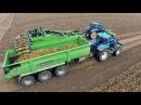 Potato Harvest | New Holland T7.220/T7030 / AVR Apache 4 row trailed potato harvester | Van Pagée