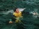 Люди и дельфины. 1-я серия (1983)