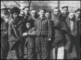 Зверства гитлеровского фашизма в отношение Советских граждан и военнопленных. Концлагеря гитлеровцев.