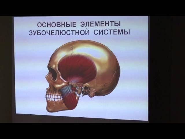 Альберт Давыдов - Кранио-постуральная кинезиотерапия в практической стоматологии