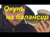 Ловля окуня зимой на балансир-Рыбалка братья Щербаковы видео