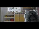 Дух Рождества- Чужой беды не бывает- трогательный ролик из Британии за три дня посмотрели 6,5 млн раз - Рождество, Sainsburys, М