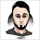 Андрей Щелковский, летсплеер «Pandafx»