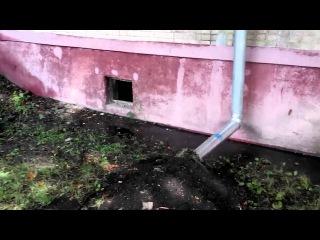 Отсутствует отмостка. Рушится фундамент дома по адресу Стадионный проезд 8/5 г. #Харьков
