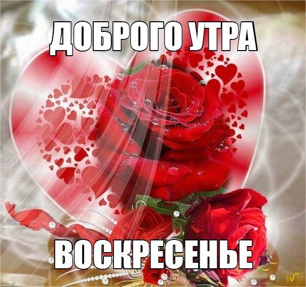 http://cs629421.vk.me/v629421813/3799d/om-0MDYithU.jpg