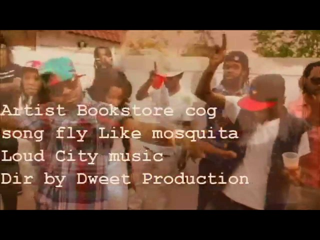 BOOKSTORE COG Fly Like Mosquita Offical Music video