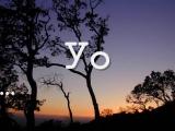 Vamos a Hablar chant - Lonnie Dai Zovi - Spanish verb conjugation