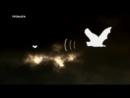 Сверхлюди Стэна Ли - Человек Радар (2 Сезон от ASHPIDYTU в 2014)