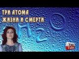 Тайны Чапман  Три атома жизни и смерти 12 11 2015