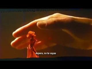 Lara Fabian -- Любовь Уставших Лебедей Live -Sub.Spanish