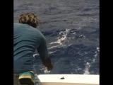 Рыбалка в Доминикане от Два Банана