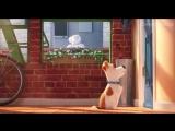 Тайная жизнь домашних животных (2016) HD