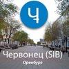 Червонец (SIB)Оренбург