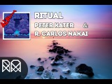 Album Ritual (2014) - Peter Kater &amp R. Carlos Nakai R.M vnc