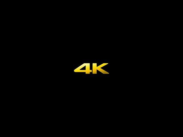 Sony 4K Camcorder FDR-AX1 '