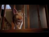 Бэйб Поросенок в городе Babe Pig in the City (1998)