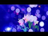 футаж Блеск,сияние,цветы