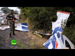 Сергей Лавров обсудил с главой МИД Малайзии ход следствия по делу о крушении MH-17