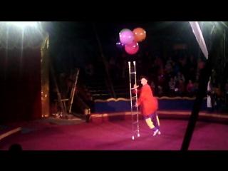 Цирк Шапито в Щёлково. Некоторые предстовления