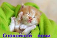 Спокойной ночи.