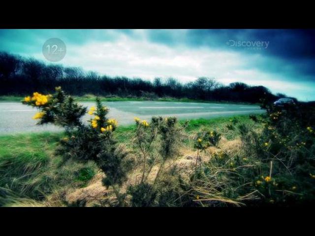 Махинаторы 11 сезон 10 серия Audi TT Видео Dailymotion