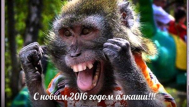 http://cs629426.vk.me/v629426006/31ac9/3l3Y2Yzp1Ic.jpg