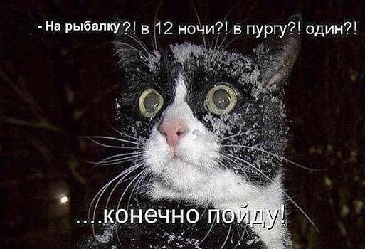 http://cs629426.vk.me/v629426098/d71e/tI9KVxdE4ZM.jpg