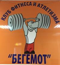 Фитнес клуб бегемот балашиха