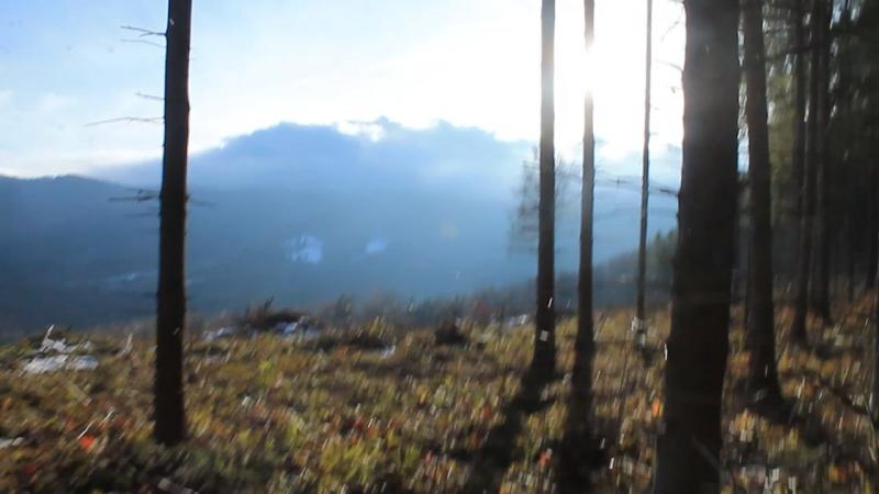 с.Кам'янка (2,5 км до вершини г.Лопата)