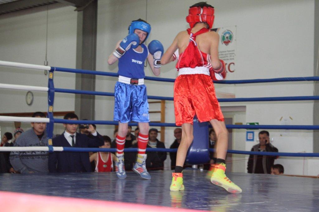 Спортсмены из станицы Зеленчукской призеры Первенства КЧР по боксу