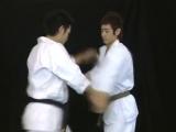 Born to be Strongest - Kyokushin Karate Instructional (Vol 2)