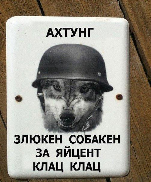 Украинские телеканалы вещают на территорию оккупированного Крыма с европейских спутников, - Мининформполитики - Цензор.НЕТ 6701