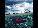 Amatory Книга мертвых 2006