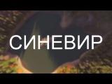 СИНЕВИР | SYNEVYR | UKRAINE | 4K