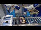 【安川電機】2014東京国際包装展:双腕ロボットによる複数品種の箱詰め&#2