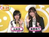 [TV NEWS] 2016.01.16 Welcoming for HKT48 & NMB48 Documentary