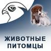 ЖИВОТНЫЕ / ПИТОМЦЫ в Соколе