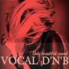 Vocal Drum and Bass
