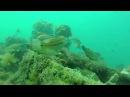 мыс Меганом Капсельская бухта Судак Крым затонувший торпедный катер