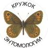 Кружок Энтомологии