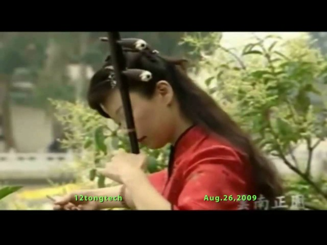 Erhu Performance 紅樓夢 枉凝眉 love in vain Sad and Melody Music in HD