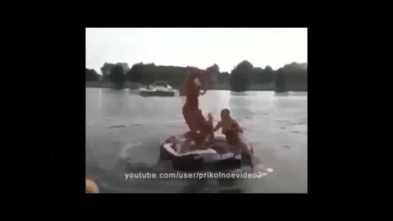 Нарезка видео смешного секса убей