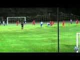 Факел - Динамо 2:0(2:0)