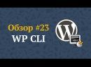 WP CLI — управляем WordPress с помощью командной строки