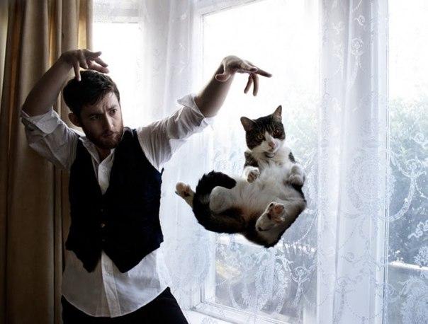 DFeJBN9sc6w - 19 лучших моментов из жизни кошек