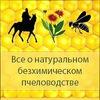 Центр Возрождения Естественного Пчеловодства