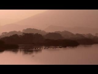 BBC Дикий Китай 6. Время возможностей (2008)